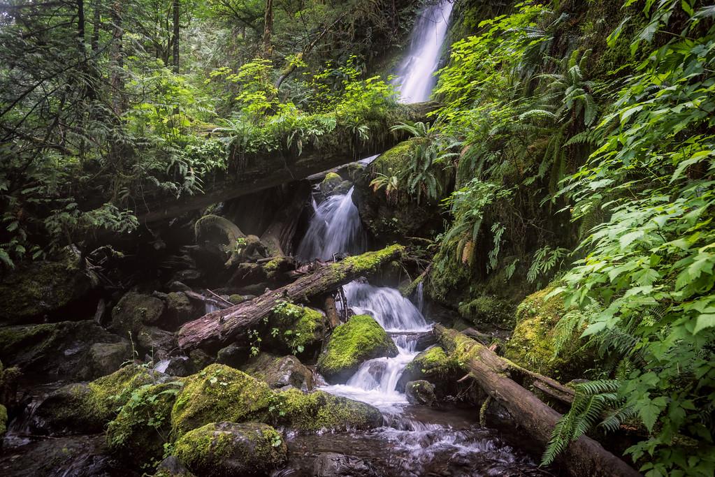 Olympic Hidden Falls