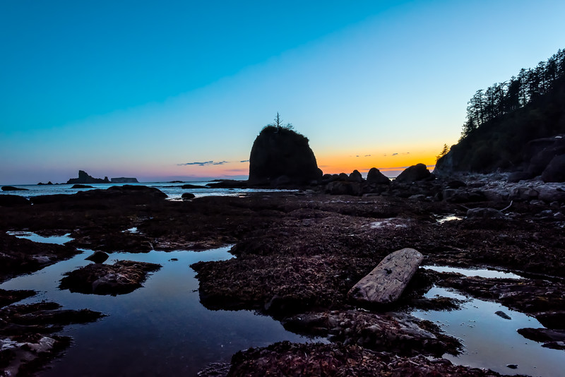 Olympic Beach Twilight