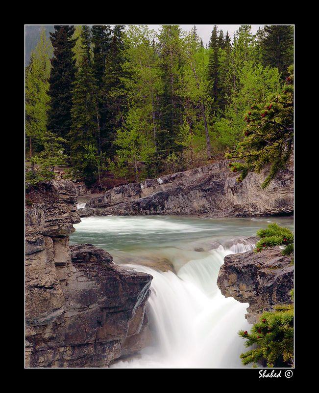 "Elbow Falls. Alberta                               Ref #7396-S <span id=""caption""><div class=""photocredit"">Photo © LenScape Photography</div></span>"
