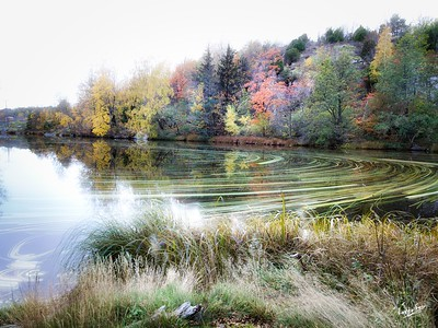 Curving into Autumn