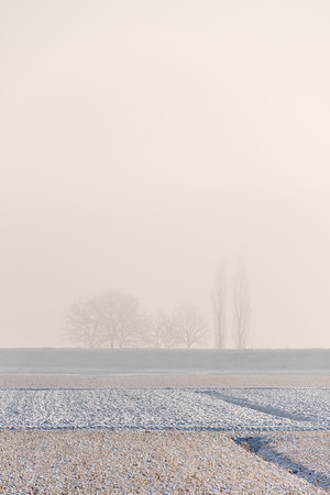 Levee - Sant'Agata Bolognese, Bologna, Italy - January 31, 2019