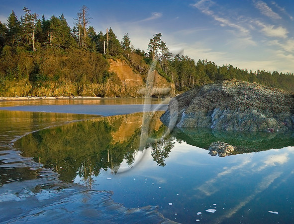Tide Pool Reflection