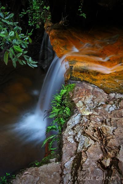 Golden falls 1- Big Basin