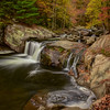 """Tellico In Autumn"""