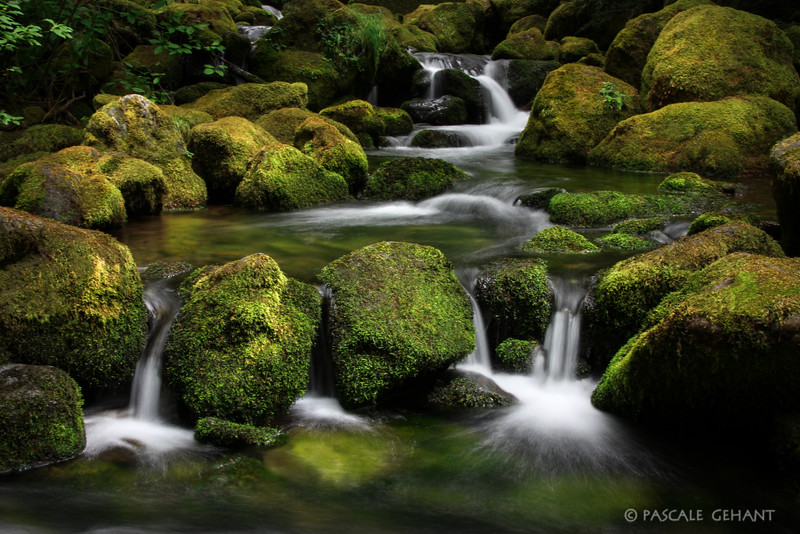 Waterfall in mossy rocks 3