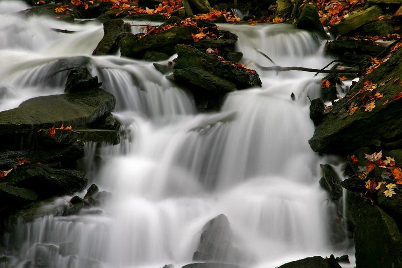 SF Rocks, Leaves, & Waterfall 2
