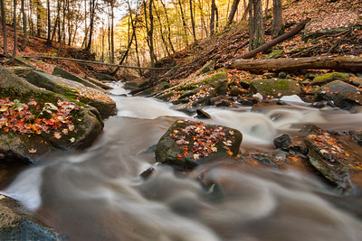 Grindstone Falls Creek.