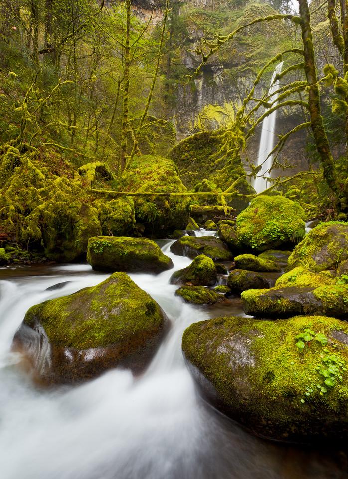 McCord Creek Below Elowah Falls