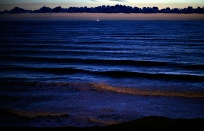 surf well after dusk 0226