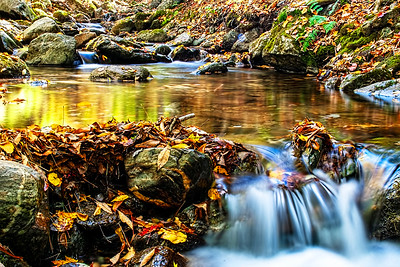 Adirondack Brook in the Fall