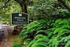 Signage at Horsetail Falls<br /> Columbia River Gorge Scenic Area, Oregon, U.S.A.<br /> <br /> © Copyright Hannah Pastrana Prieto