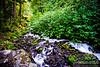 Wahkeena Falls<br /> Columbia River Gorge Scenic Area, Oregon, U.S.A.<br /> <br /> © Copyright Hannah Pastrana Prieto