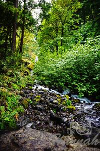 Wahkeena Falls Columbia River Gorge Scenic Area, Oregon, U.S.A.  © Copyright Hannah Pastrana Prieto