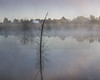 Foggy Pond 03-01-2