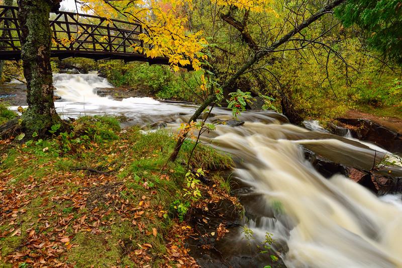 Miller Creek in Lincoln Park 01
