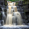 Whitfield Gill Force