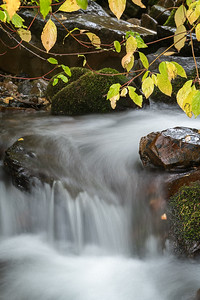 Small Fall Waterfall
