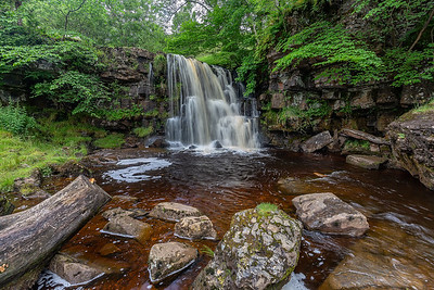 East Gill Force