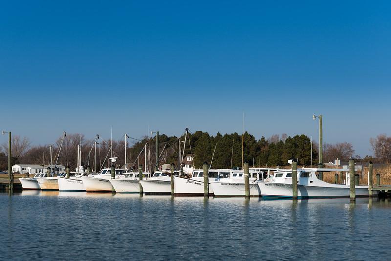 Line of Deadrise Fishing/Crabbing Boats