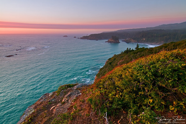 Overlooking the sea from cliffs along California's northern coast.