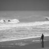 Surf Automnal © 2016 Olivier Caenen, tous droits reserves
