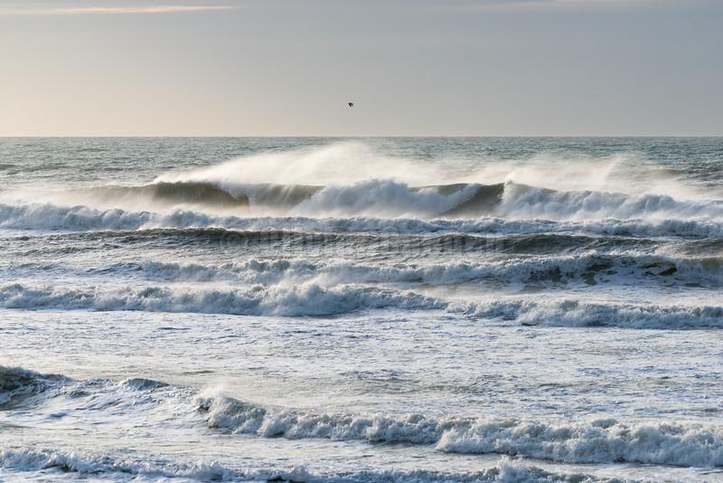 Surf au Touquet 30-12-2015 © 2015 Olivier Caenen, tous droits reserves