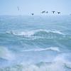 Windsurf : Cartouche ˆ Wissant /ULLA