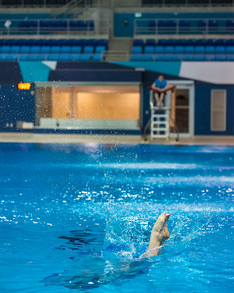 SPORTDAD_diving036