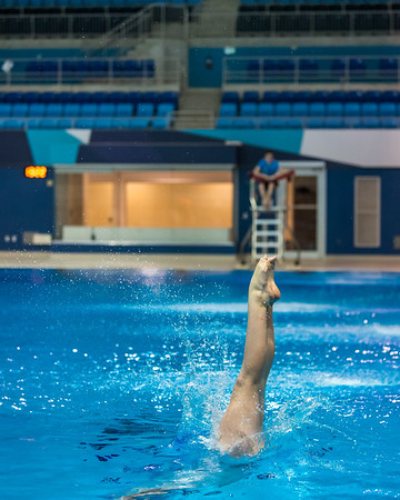 SPORTDAD_diving035