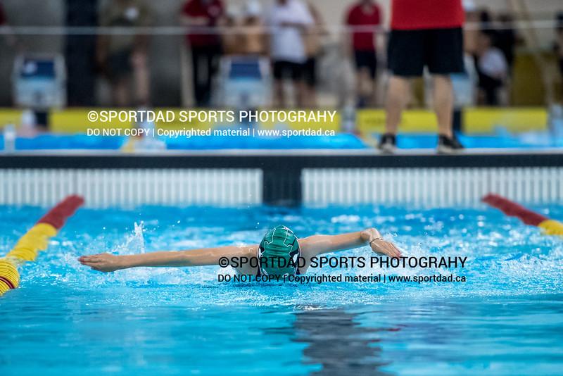 SPORTDAD_swimming_7740