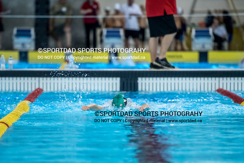 SPORTDAD_swimming_7731