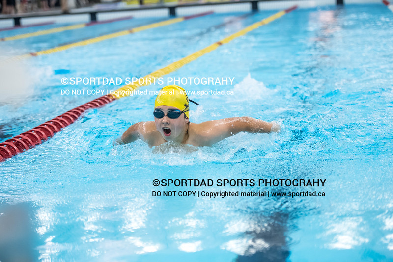 SPORTDAD_swimming_47148