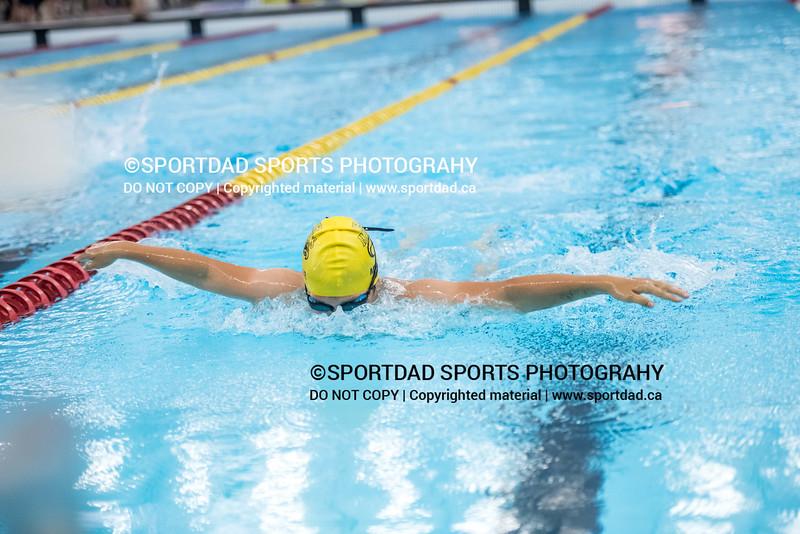 SPORTDAD_swimming_47150