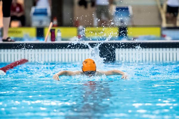 SPORTDAD_swimming_47300