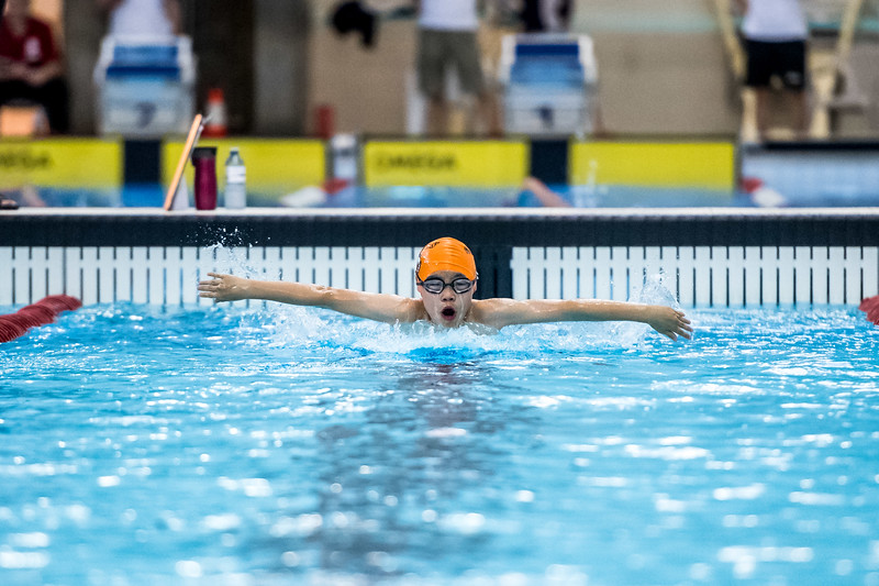 SPORTDAD_swimming_47293