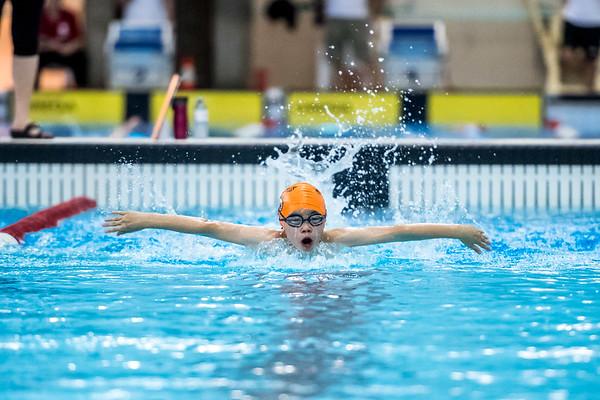SPORTDAD_swimming_47299