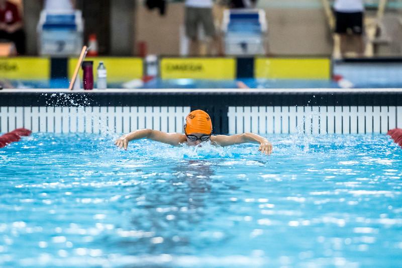 SPORTDAD_swimming_47294