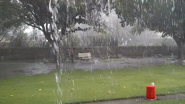A raw, unedited video of the tail-end of the microburst on July 23, 2013 Motorola Droid Razr Maxx  Watch the neighbor's tree fall at the 11 second mark.  Look to the left of the tree near the park bench, over the neighbor's roof.