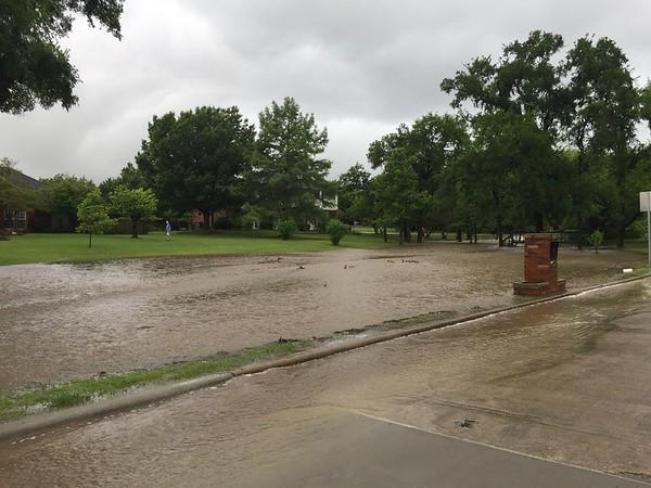Flooded Dove Creek