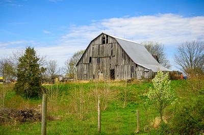 Large Barn Springtime