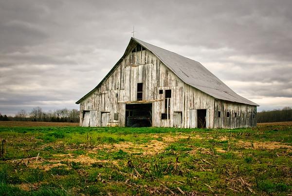 Gray Spring Morning Barn