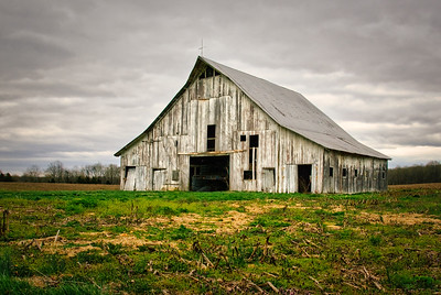 Gray Spring Morning Barn