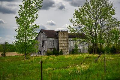Barn and Buzzards