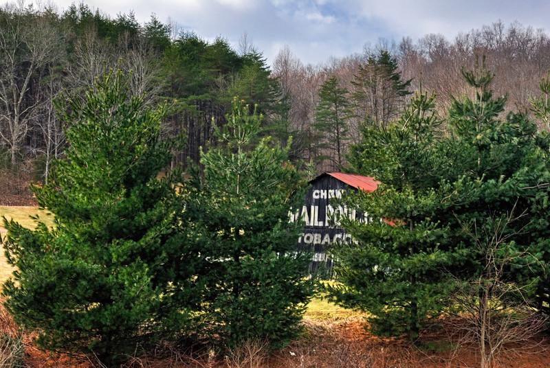 Hidden Mail Pouch Barn