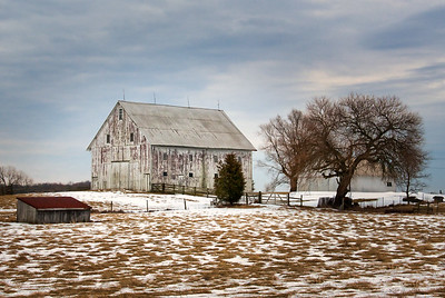 Weathered White Barn with Snow