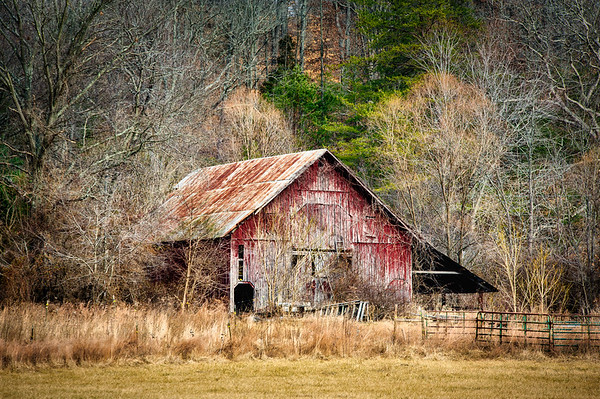 Weathered Red Barn and Rusty Roof