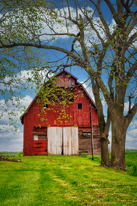 Red Barn in Trees