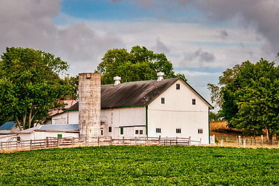 Evening Farm and Barn