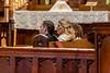 201905010WY_Amy_Smith_&_Scott_Meier_Wedding (3744)MS