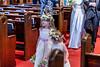 201905010WY_Amy_Smith_&_Scott_Meier_Wedding (4348)MS